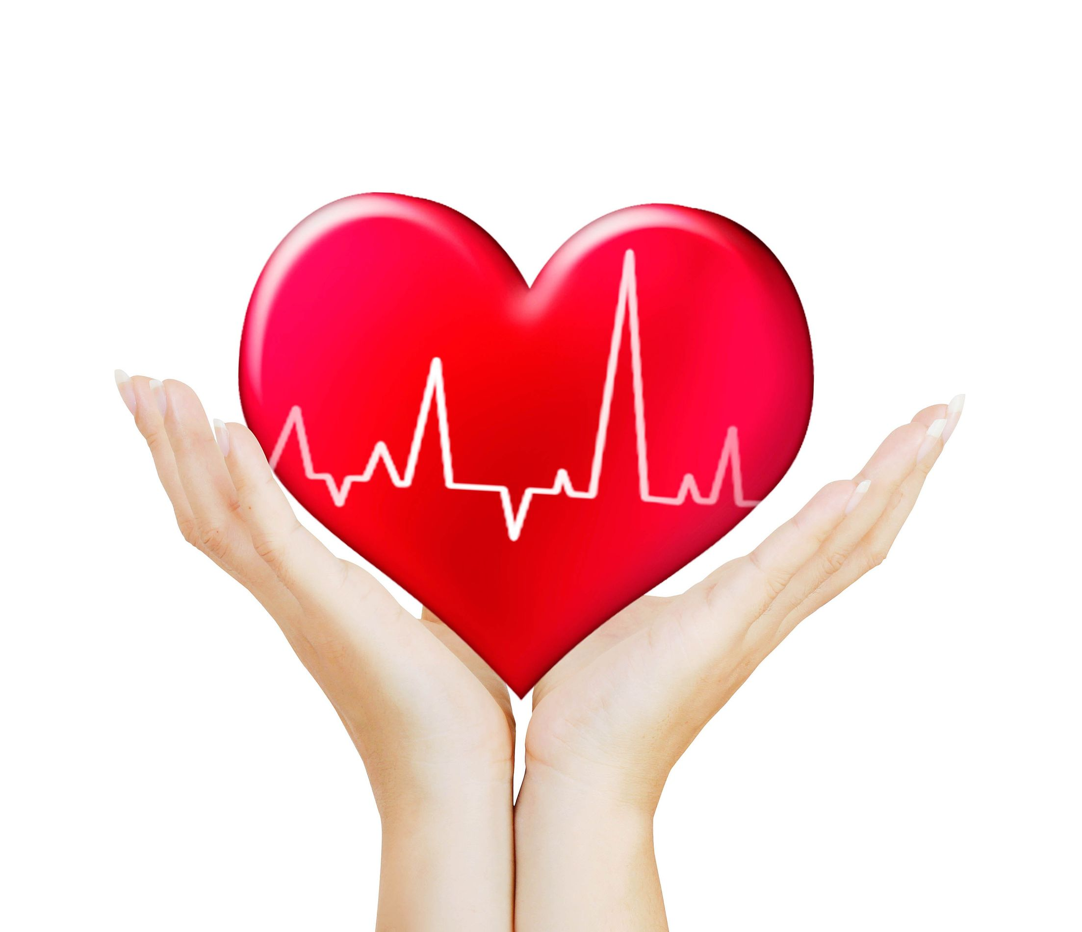 What Role Does NO Play in Heart Health?